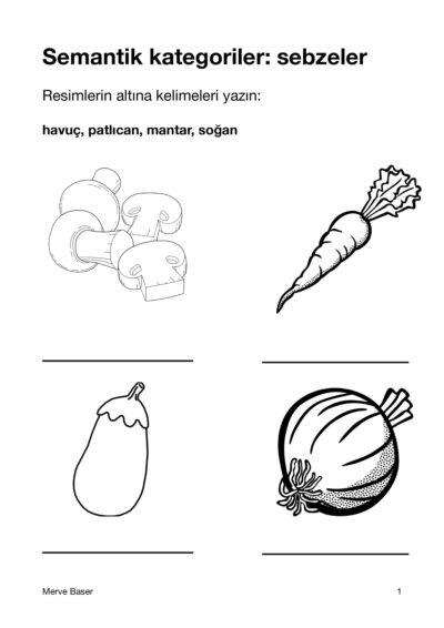 Wort-Bild-Zuordnung türkisch (Gemüse)