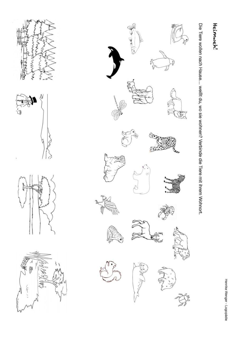 Semantisches Sortieren Tiere – Wohnorte