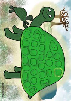 """Spielplan """"Schildkröte"""""""