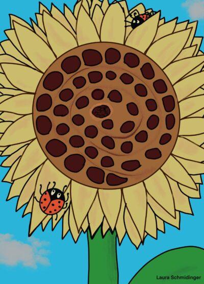 Spielplan Sonnenblume